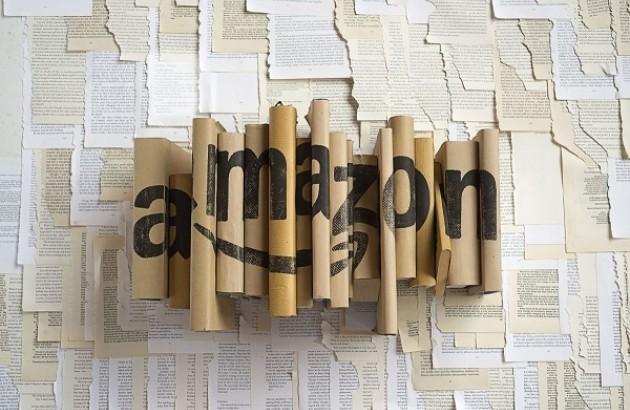 در عصر کیندل، کتاب هم قیمت یک ساندویچ است. دنیس جانسون، یک ناشر مستقل، میگوید: «آمازون در القای این ایده موفق بوده است که کتاب چیزی است با حداقل ارزش».